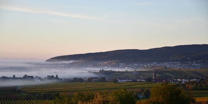Kleinkarlbach Blick nach Karlstadt